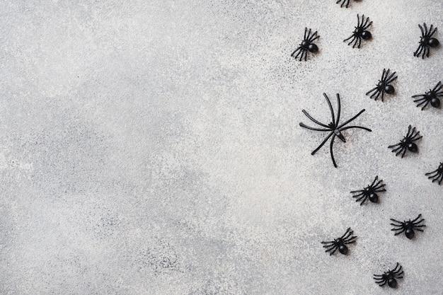 Schwarze spinnen auf einem grauen hintergrund Premium Fotos