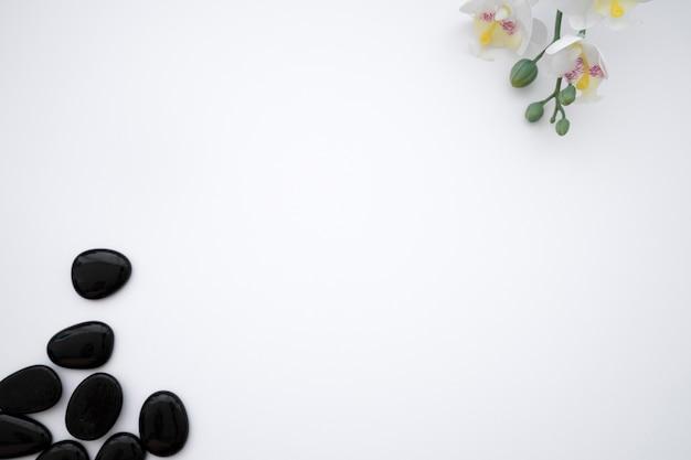 Schwarze steine und blumen Kostenlose Fotos