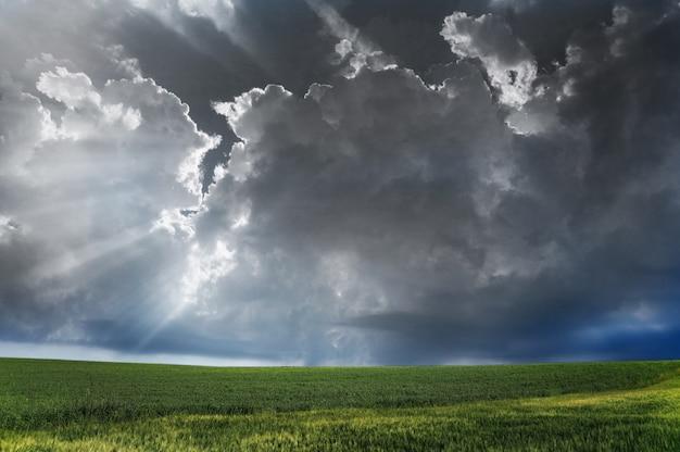 Schwarze wolken über dem feld Kostenlose Fotos