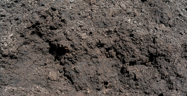 Schwarzer fruchtbarer landschwarzboden. Premium Fotos