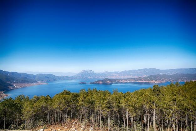 See in einem wald Kostenlose Fotos