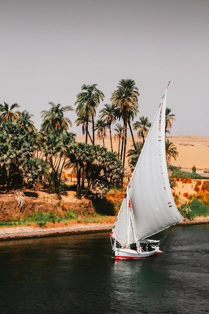 Segelboote auf dem nil Premium Fotos