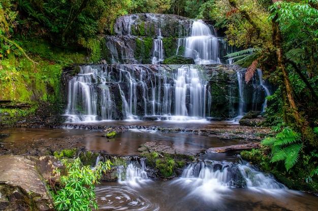 Seidiger wasserfall tief im üppigen einheimischen busch und wald Premium Fotos