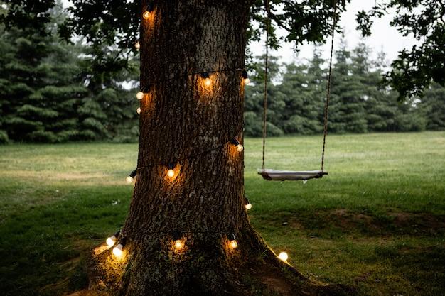 Seilschaukel hängt an einem großen baum mit leuchtenden lichtern Premium Fotos