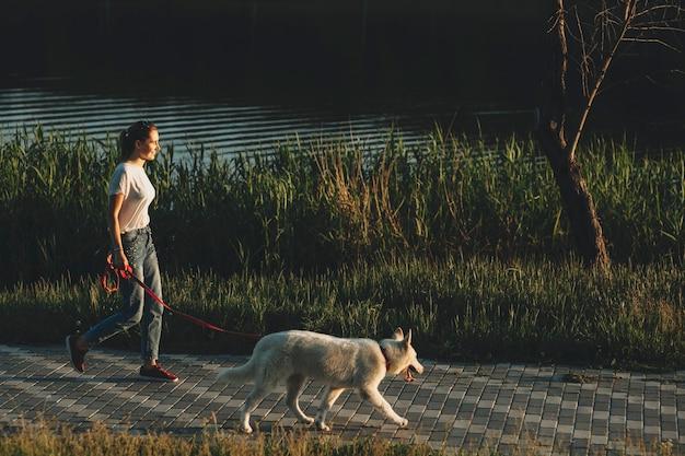 Seitenansicht der frau in der leichten sommerkleidung, die am abend an der leine des weißen hundes mit gras- und wasserquelle in der nähe geht Premium Fotos