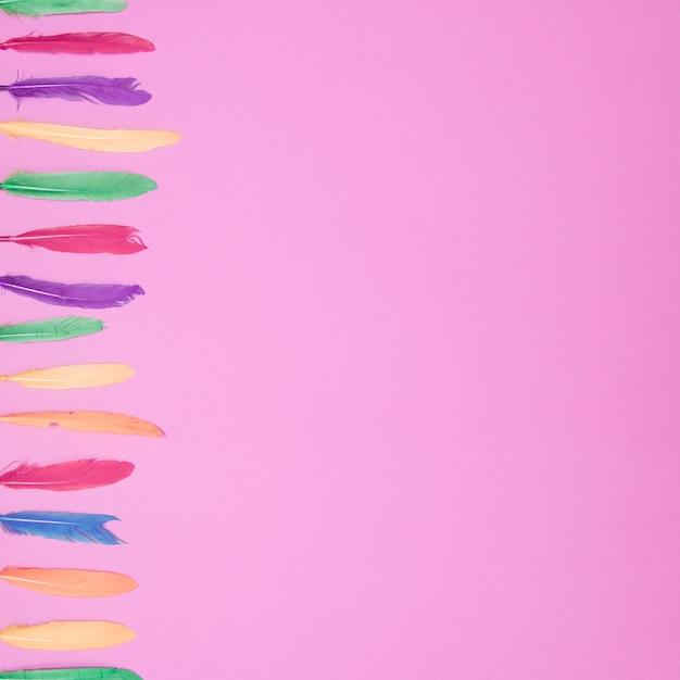 Seitenreihe von bunten weichen federn gegen rosa hintergrund Kostenlose Fotos