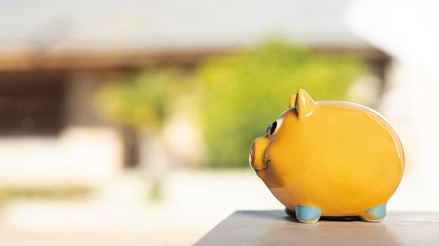 Seitlich vorderansichtsparschwein auf unscharfem hintergrund Kostenlose Fotos