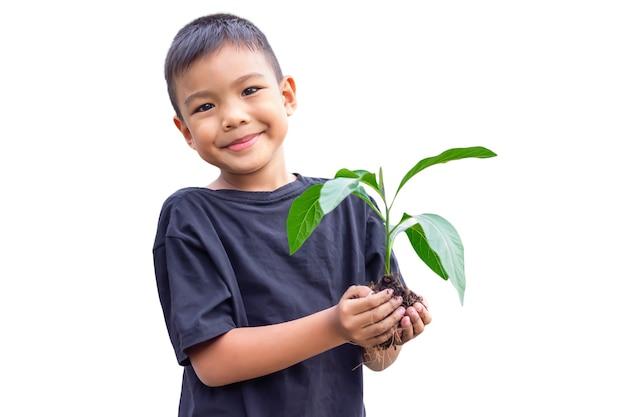 Selektiver fokus der hände asiatischer kinderjunge, der eine kleine grüne pflanze mit erde hält. auf weißem hintergrund isoliert. Premium Fotos