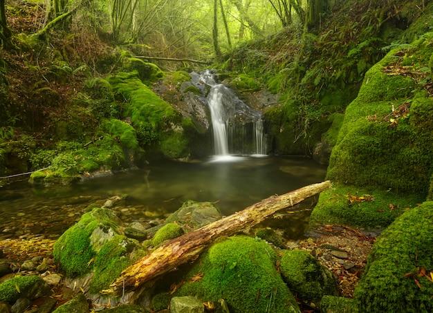 Sequeiros river wasserfall Premium Fotos