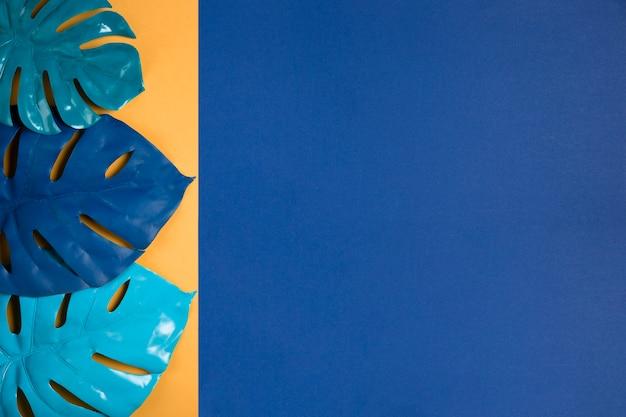 Set blaue blätter mit exemplarplatz Kostenlose Fotos