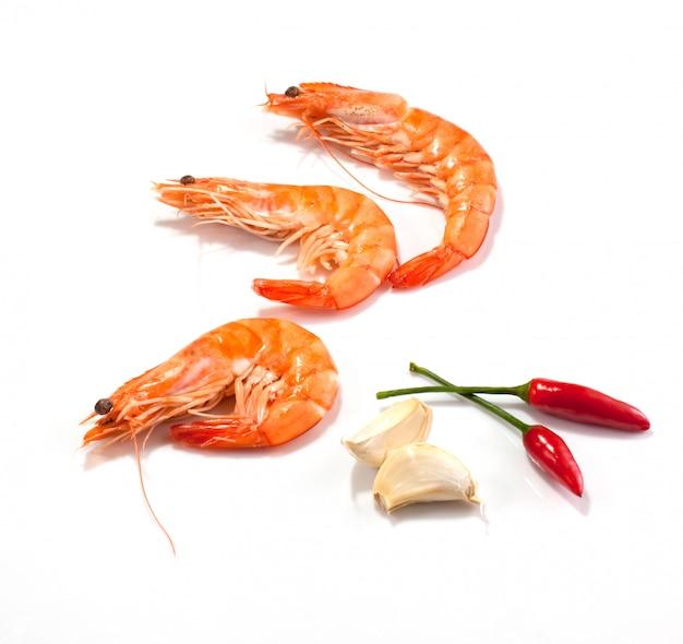 Shrimps Premium Fotos
