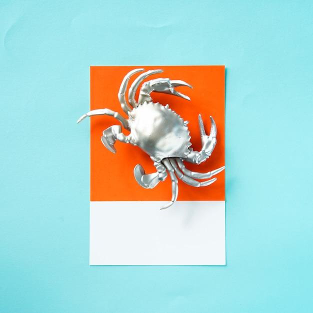 Silberne krebstierkrabbe auf papier Kostenlose Fotos
