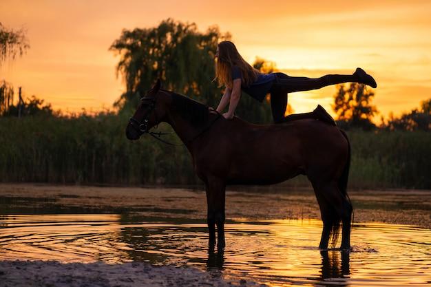 Silhouettierte ein schlankes mädchen, das zu pferd yoga praktiziert, bei sonnenuntergang steht das pferd im see. kümmere dich um das pferd und gehe mit ihm. kraft und schönheit Premium Fotos