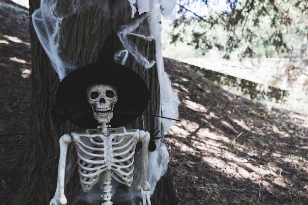 Skelett mit dem hexenhut, der auf baum sich lehnt und das halten stieg in zähne Kostenlose Fotos