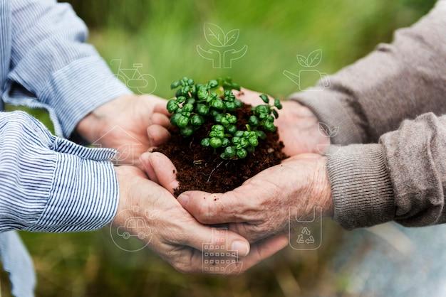 Smart farming 5.0 grünpflanzenprodukt agrartechnologie Kostenlose Fotos