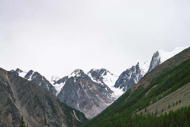 Snowy-gebirgsspitze hinter hügel mit wald unter bewölktem himmel. rocky ridge bei bewölktem wetter. weißer schnee am gletscher. stimmungsvolle landschaft majestätischer natur. Premium Fotos