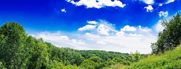 Sommerfeld gegen den blauen himmel. schöne landschaft. banner Kostenlose Fotos
