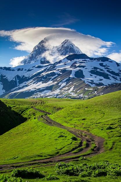 Sommerlandschaft mit ushba-gebirgsschneebedeckter spitze Premium Fotos