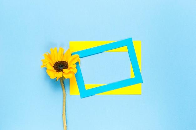 Sonnenblume und rahmen Kostenlose Fotos