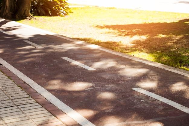 Sonnenlicht über der weißen markierung auf asphalt im park Kostenlose Fotos