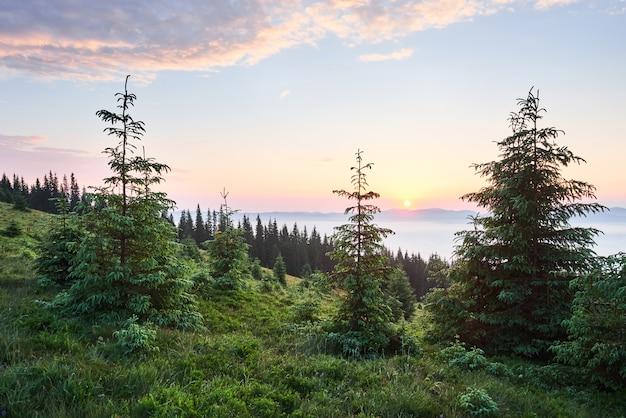Sonnenuntergang in der berglandschaft. dramatischer himmel. karpaten der ukraine europa. Kostenlose Fotos