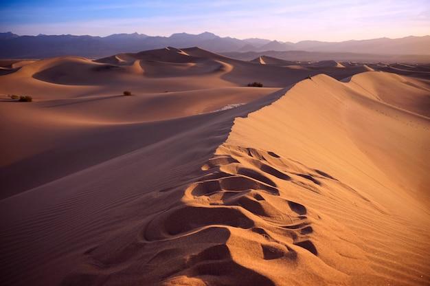 Sonnenuntergang in der sahara-wüste Premium Fotos