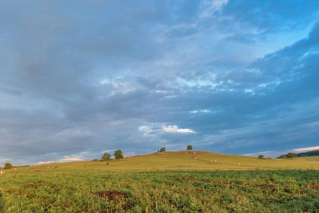Sonnenuntergang über den feldern Premium Fotos