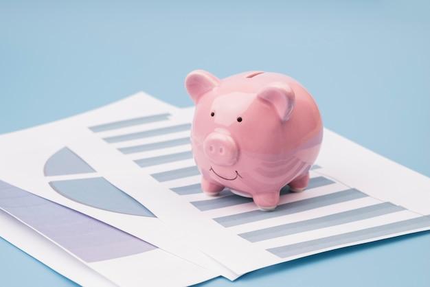 sparschwein auf firmenunterlagen  kostenlose foto