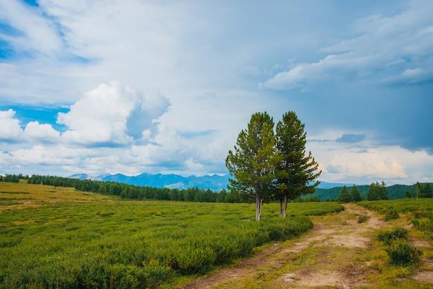 Spektakuläre aussicht auf die bergwelt Premium Fotos