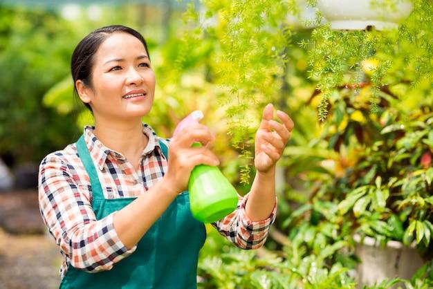 Spritzwasser auf pflanzen Premium Fotos