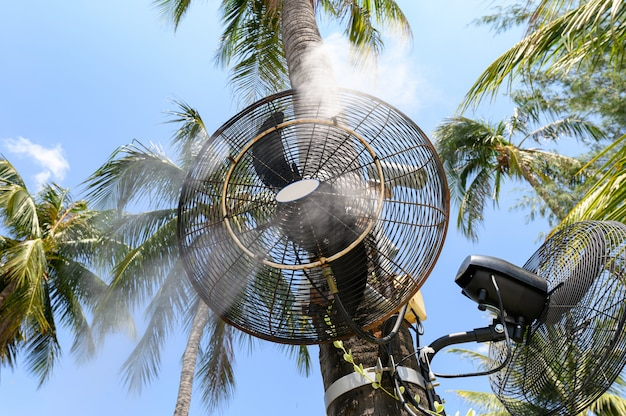 Sprühdampf des nebelgebläses auf kokosnussbaum Premium Fotos
