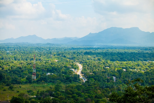 Sri lanka tropischer wald Premium Fotos