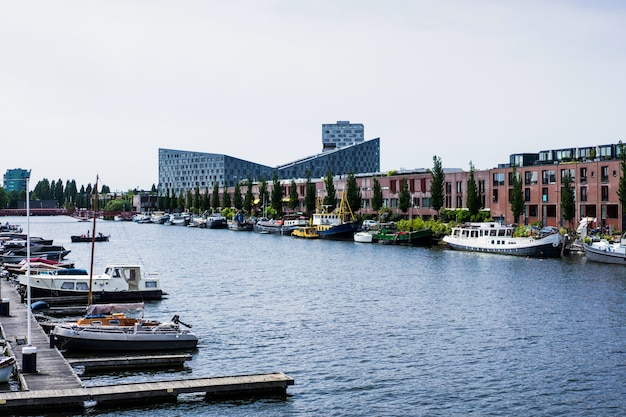 Stadthafen mit yachten. amsterdam Kostenlose Fotos