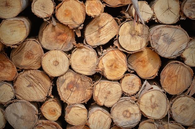 Stapel der schnittholzstumpf-protokollbeschaffenheit Premium Fotos
