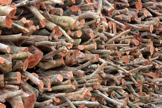 Stapel schnittholzklotz, zum als brennholz zu dienen Premium Fotos
