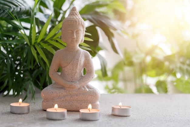 Statue des buddha, der in der meditation sitzt Premium Fotos