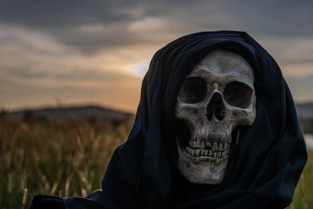 Stillleben, menschliche schädel und knochen prallten auf trockenem gras auf dem feld mit schwachem licht. Premium Fotos