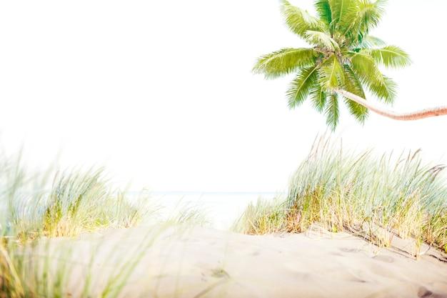Strand-sommer-ufer-seesand-konzept Premium Fotos
