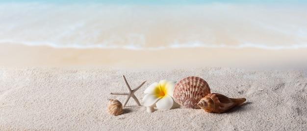 Strandhintergrund, sommerhintergrundkonzept Premium Fotos