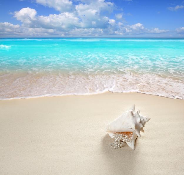 Strandsandperlenhalskettenoberteil-sommerferien Premium Fotos