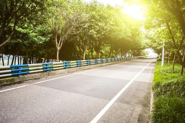 Straße mit wald Kostenlose Fotos