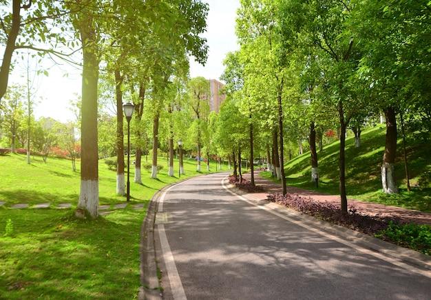 Straße und natur Kostenlose Fotos