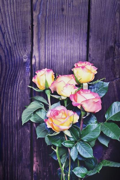 Strauß blühender rosen Premium Fotos
