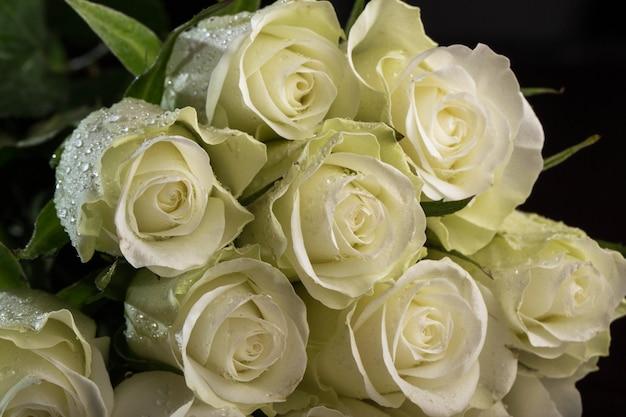 Strauß weißer rosen Kostenlose Fotos