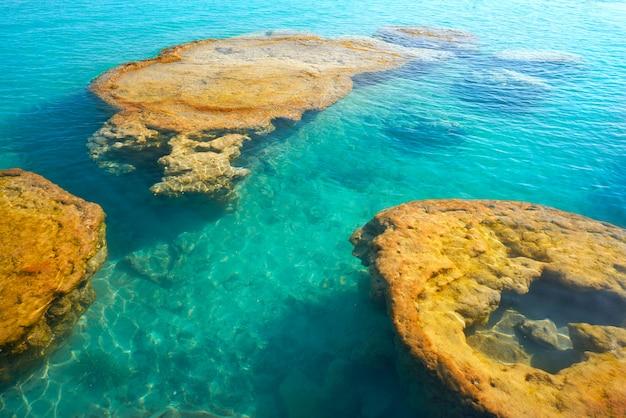 Stromatolithe in der bacalar-lagune von mexiko Premium Fotos
