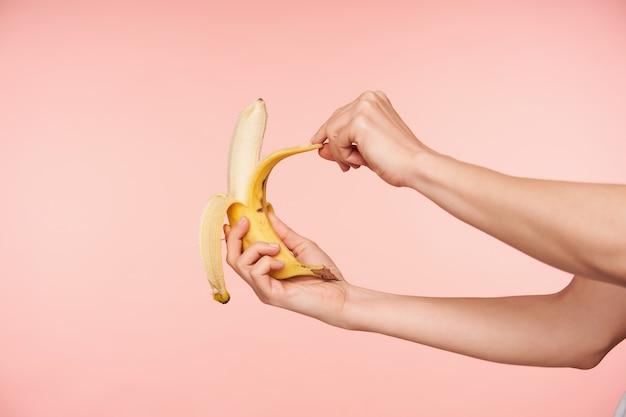 Studioaufnahme der hände der eleganten frau, die banane halten, während sie sie schälen und beißen, gesundes frühstück haben, während über rosa hintergrund isoliert werden Kostenlose Fotos