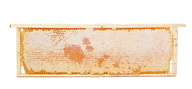 Süße bienenwabe lokalisiert auf weiß Premium Fotos