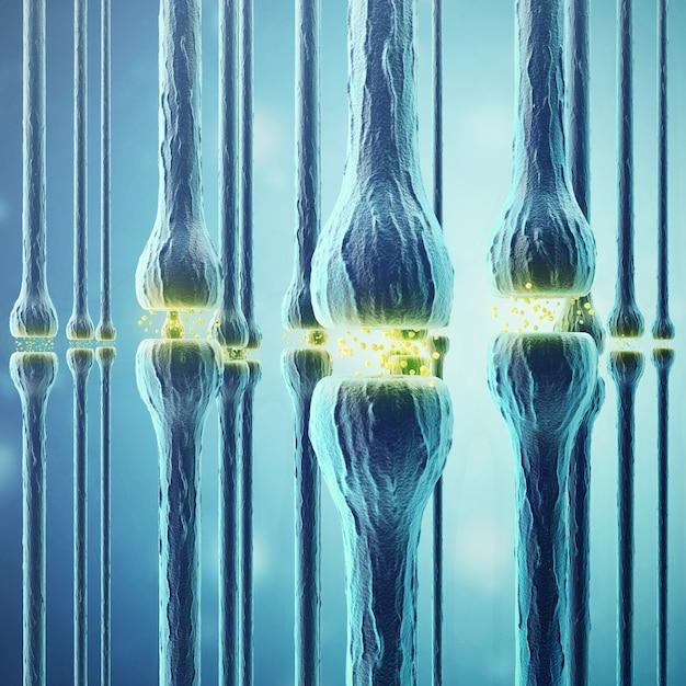 Synaptische übertragung, menschliches nervensystem. Premium Fotos