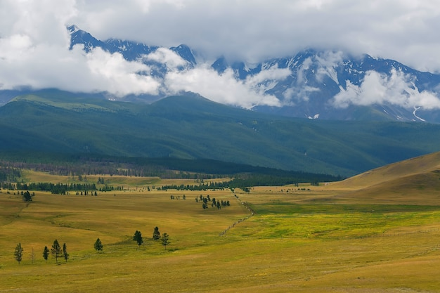 Szenische ansicht der schneebedeckten nord-chuya strecke in den altai bergen am sommer, sibirien, russland Premium Fotos