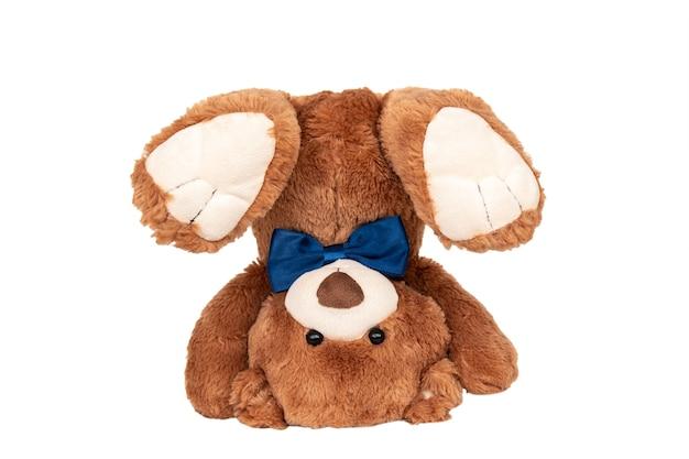 Teddybär mit blauer schleife auf den kopf gestellt Premium Fotos